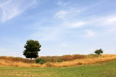 Free Landscape Royalty Free Stock Image - 14213036