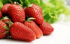 Free Strawberries Stock Photo - 14213390