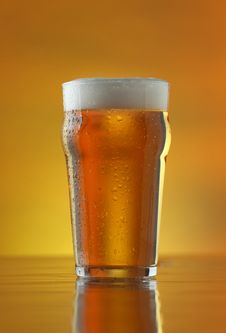 Free Fresh Refreshing Beer On A Golden Background Royalty Free Stock Image - 14215466