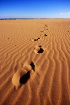 Free Footsteps Going Over The Sand From The Sea Royalty Free Stock Photos - 14216358