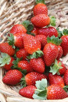 Free Fresh Strawberries In Basket Royalty Free Stock Image - 14217276