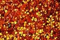 Free Dried Chilli Pepper Stock Photo - 14220390