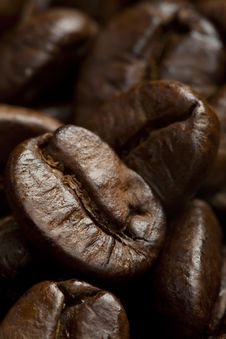 Free Roasted Coffee Beans Stock Photos - 14220983