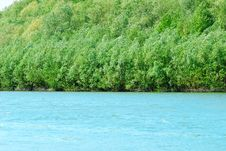 Free Summer Landscape. Forest And River Stock Photography - 14221172