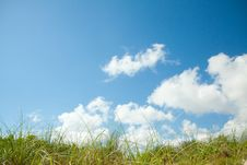 Free Grass And Sky Background Stock Image - 14221711