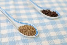 Spices And Seasoning As Food Ingredients Stock Images