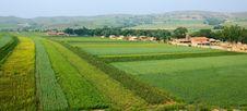 Free Inner Mongolia: Village And Farmland Stock Photos - 14223003