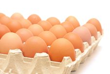 Eggs In A Protective Container On White Stock Photos