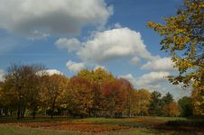 Moscow, Russia, Autumn Landscape In The Park Stock Photos