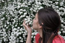 Free Beautiful Girl Smells White Flowers Royalty Free Stock Photography - 14223957