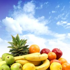 Free Different Juicy Fruits On A Sky Background Stock Photo - 14224470