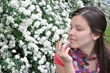 Free Young Girl Smells White Flowers Royalty Free Stock Images - 14224779