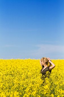 Free Woman In A Field Of Wildflowers Royalty Free Stock Photo - 14225415