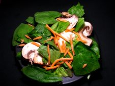 Free Garden Salad Royalty Free Stock Photos - 14225958