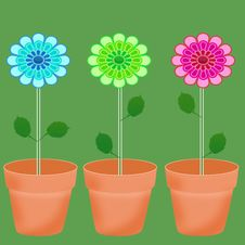 Free Flower Stock Image - 14227331