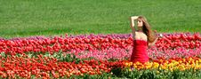Free Beautiful Girl In Tulip Field Stock Photo - 14228020