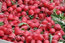 Free Red Radishes 1 Stock Photo - 14229910