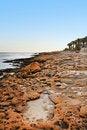 Free Beautiful Beach Stock Photo - 14232470