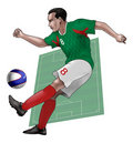Free Team Mexico Royalty Free Stock Photo - 14232485