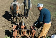 Free Men Preparing To Plant Some Corn Stock Photos - 14230913