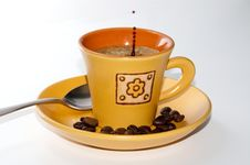 Free Coffee Time Royalty Free Stock Photography - 14231237