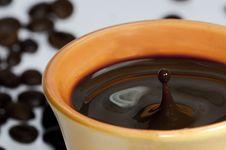 Free Drop Of Coffee Stock Photos - 14231983