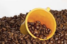 Free Cup Of Coffee Stock Image - 14232061