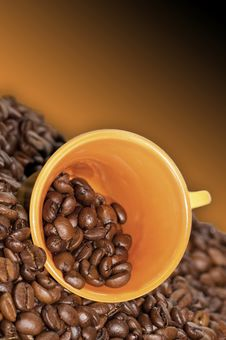 Free Cup Of Coffee Royalty Free Stock Photography - 14232087