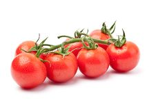 Free Fresh Tomatoes Royalty Free Stock Image - 14233786