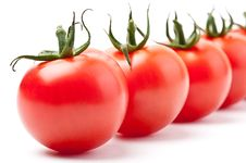 Free Fresh Tomatoes Stock Photography - 14233842