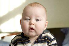 Free Portrait Of Little Boy Stock Photo - 14234330
