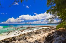 Free Tropical Beach At Seychelles Stock Photography - 14235102