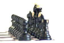 Free Chess Stock Image - 14235141