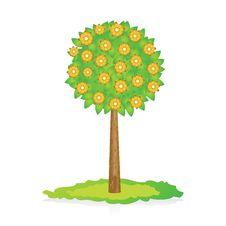 Free Flowering Tree Stock Photo - 14235960