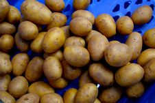 Free Potatoes Stock Image - 14236351