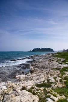 Free Mediterranean Rocky Coast Royalty Free Stock Photography - 14237177
