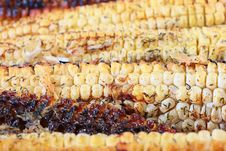 Paked Corn Stock Images