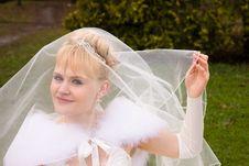 Free Beautiful Bride Stock Image - 14238551