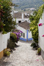 Free óbidos Streets Royalty Free Stock Images - 14245519