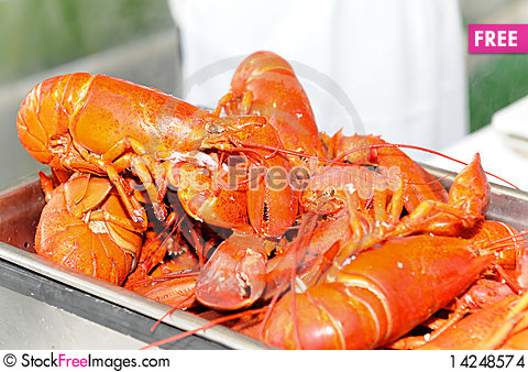 Free Full Plate Of Lobsters Stock Images - 14248574