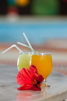 Free Tropical Cocktails Stock Images - 14242504