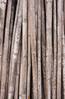 Free Old Bamboo Royalty Free Stock Image - 14242646