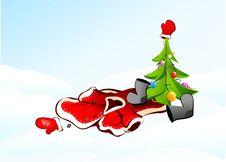 Free Christmas Tree Stock Image - 14244181