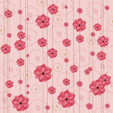 Floral Pink Background Stock Image