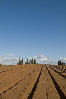 Free Plowed Field Stock Photo - 14244930