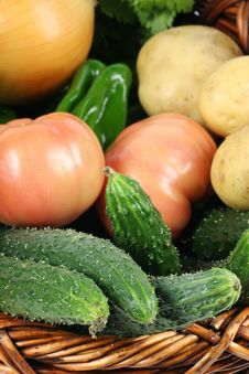 Free Fresh Vegetables Stock Images - 14245814