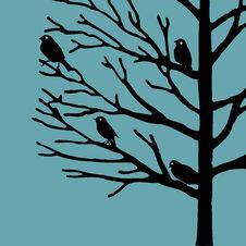 Free Birds On Tree Stock Photography - 14246632