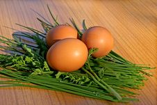 Free Hen S Egg Royalty Free Stock Image - 14246726