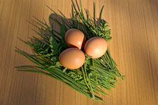 Free Hen S Egg Royalty Free Stock Image - 14246776