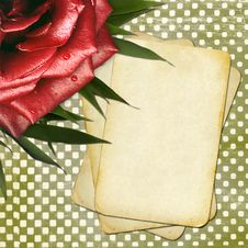 Grunge Papers With Red Rose For Design Stock Photography